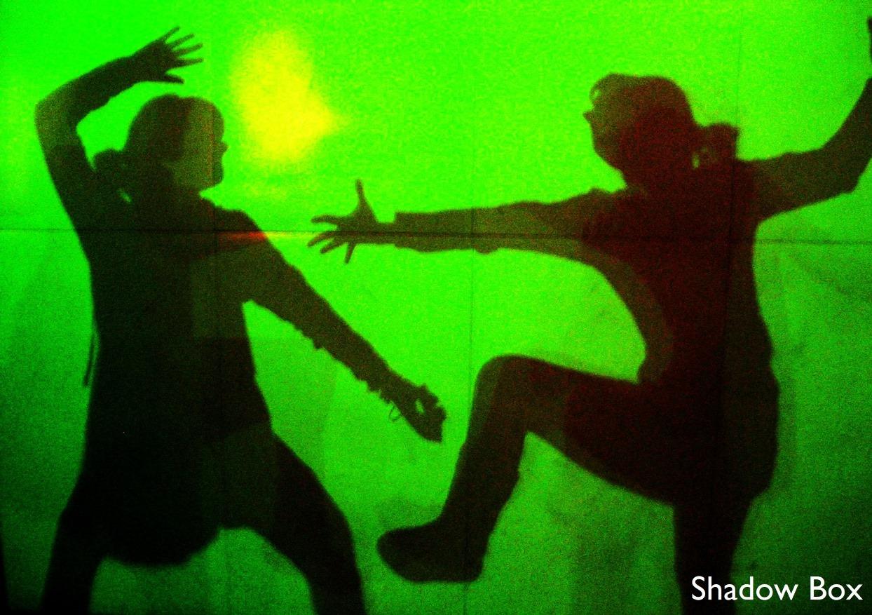 Shadow Box, Magic Gallery, Camera Obscura & World of Illusions