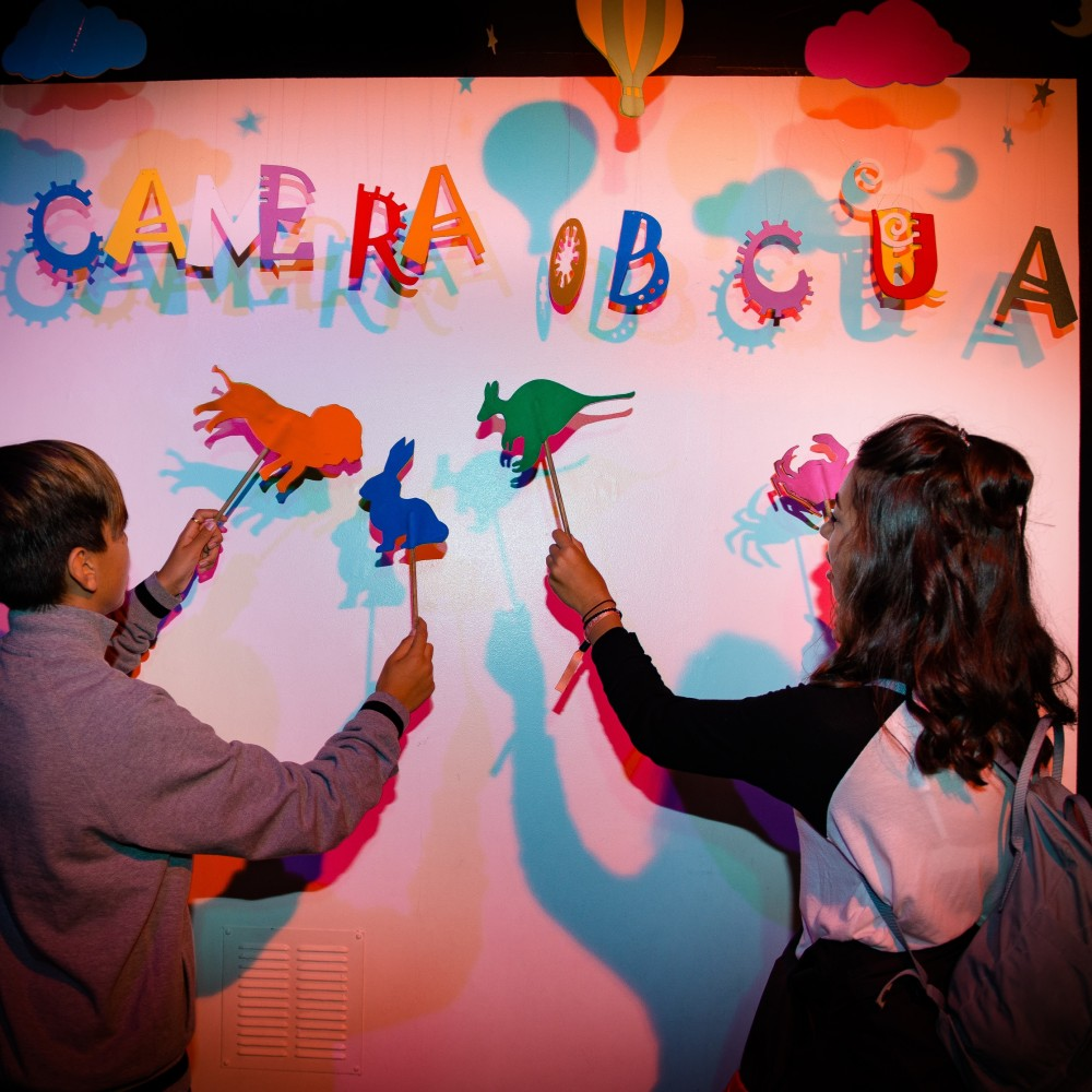 Colour shadow wall, Camera Obscura, Light Fantastic, World of Illusions