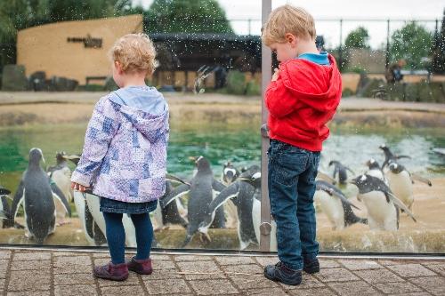 Children at Edinburgh Zoo