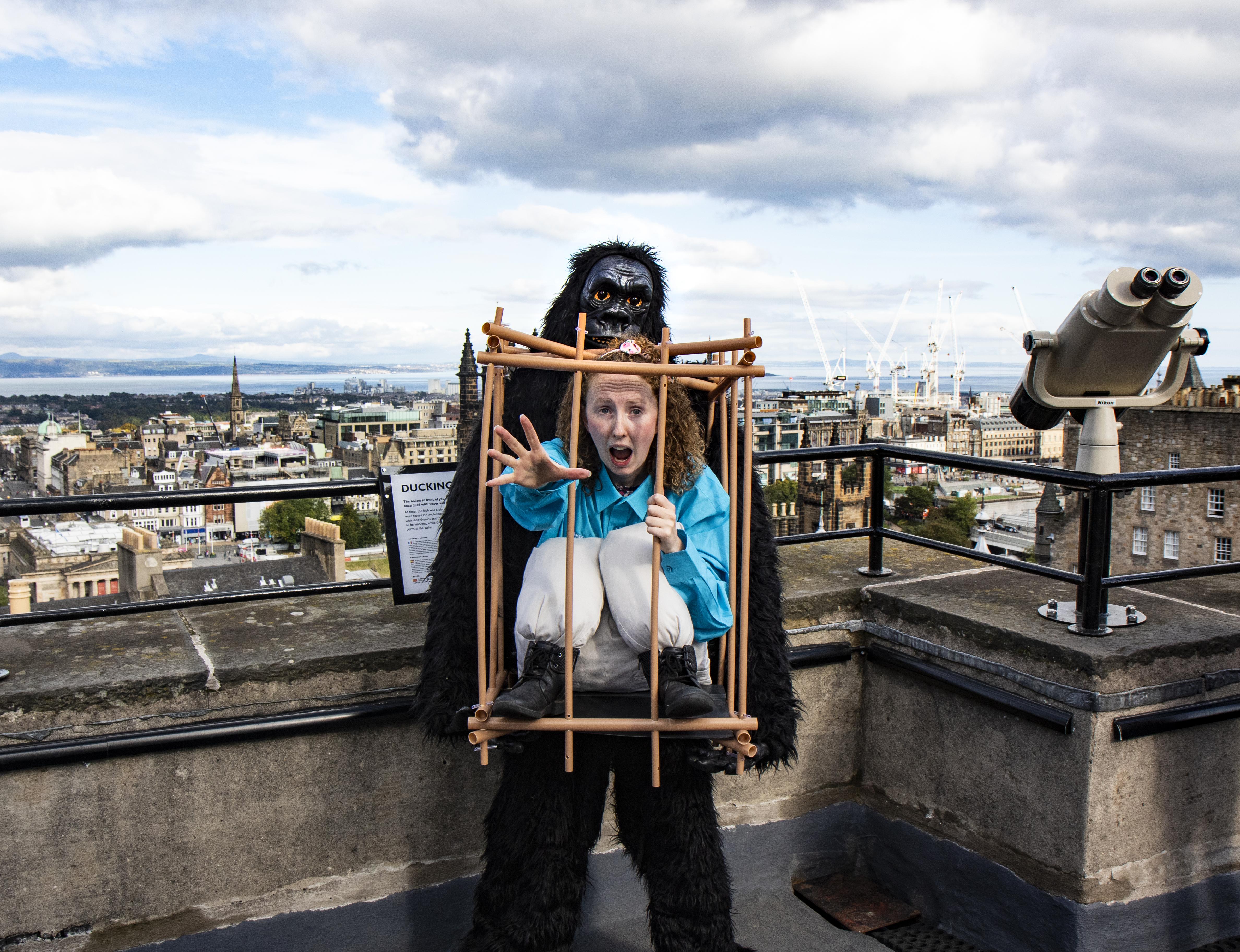 Gorilla at Camera Obscura Edinburgh